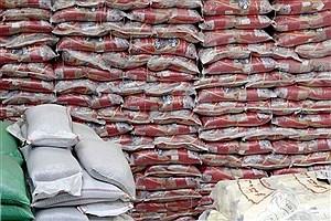 تصویر  توزیع ۶۰۰ تن برنج وارداتی با نرخ مصوب دولتی در استان آغاز شد