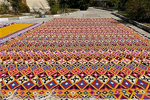 تصویر  رونمایی از بزرگترین گلیم دستبافت در شهرستان قیر و کارزین