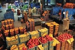 زمان توزیع و قیمت میوههای نوروزی اعلام شد
