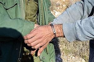 تصویر  ۵ شکارچی متخلف در همدان دستگیر شدند