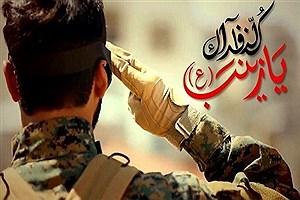 تصویر  دیوار نگاره شهدای مدافع حرم کشور در باغ موزه همدان رونمایی شد