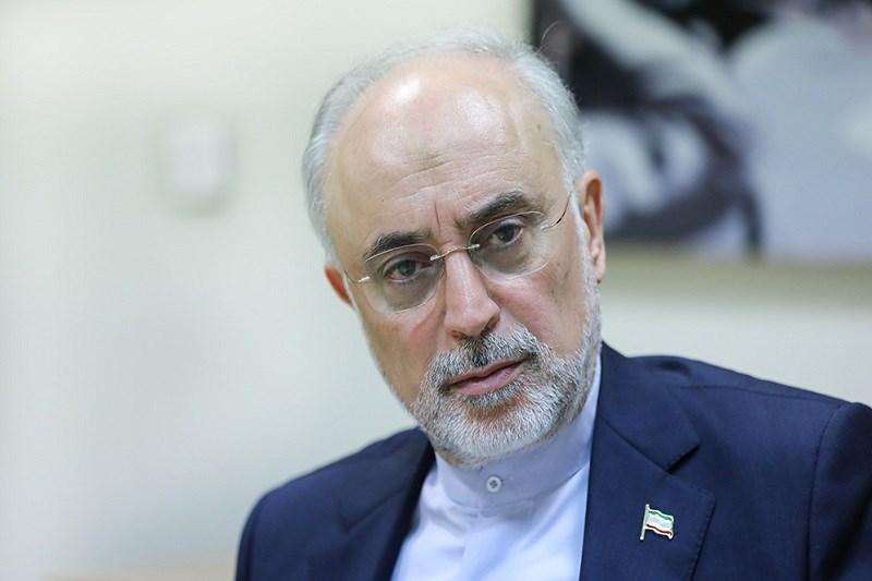 شکست مخالفان پیشرفتهای ایران با اقدام علیه مرکز نطنز