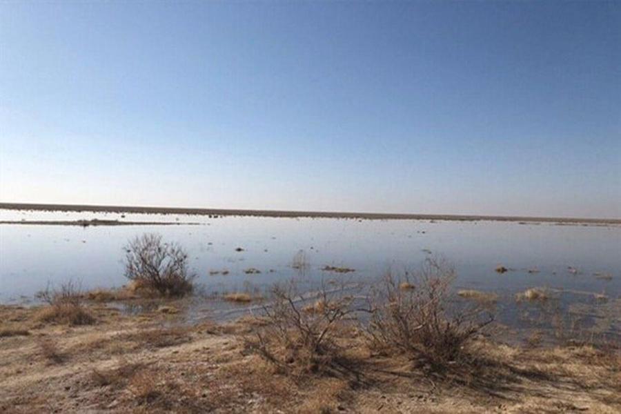 تصویر طرح زیستمحیطی که در ایران متوقف شد اما در کُرهجنوبی به بالندگی رسید