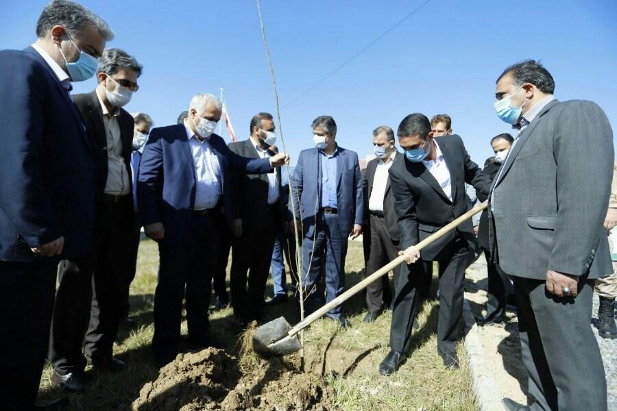 تصویر فضای سبز استان باید تقویت شود