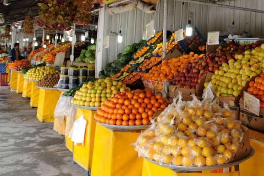 آغاز توزیع میوه نوروزی با قیمت مصوب