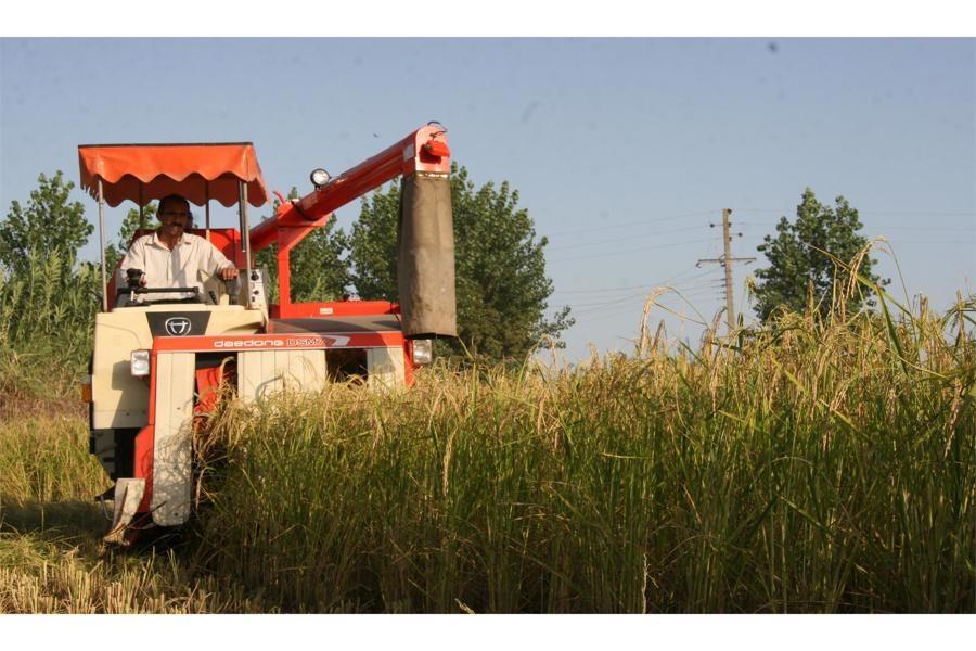 افزایش بهره گیری از تکنولوژی در تولید محصولات کشاورزی گیلان
