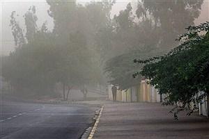 تصویر  پیشبینی وزش باد شدید در کرمان