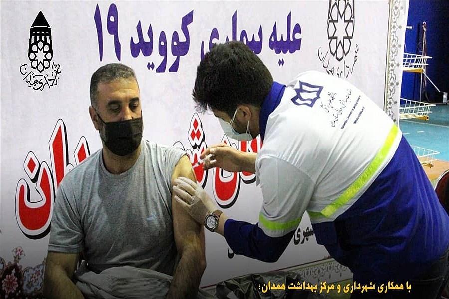 واکسیناسیون پاکبانان همدان