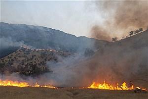 تصویر  ارتفاعات کردلان دشتی همچنان در حال سوختن/ تلاش برای خاموش کردن آتش ادامه دارد