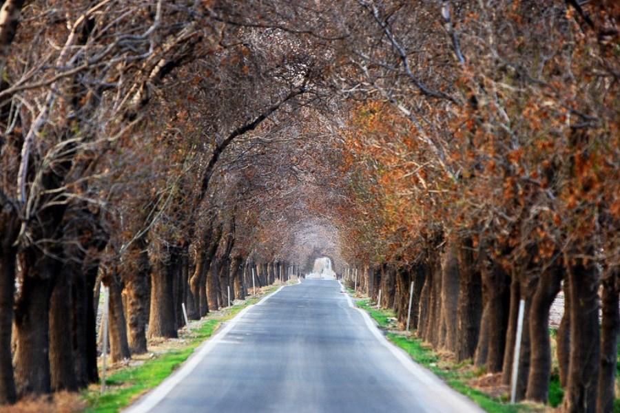 """پیشنهاد پرسون برای امروز: روستاگردی بهجای پارکگردی / """"بهشت کوچک"""" تهران کجاست؟"""