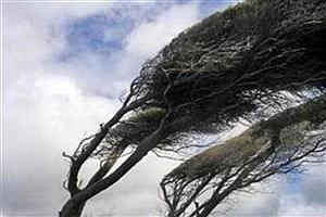تصویر  پیشبینی وزش باد شدید طی امروز و فردا در کرمان