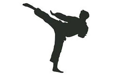کاراتهکاهای ایران صدرنشین شدند