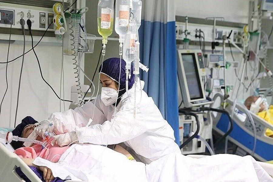 شناسایی 505 بیمار کرونایی دیگر در کردستان/ رعایت پروتکل ها در استان پایین تر از میانگین کشوری است