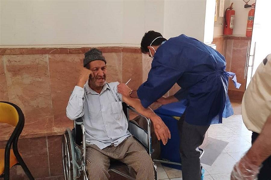 چند ایرانی تاکنون واکسن زده اند؟