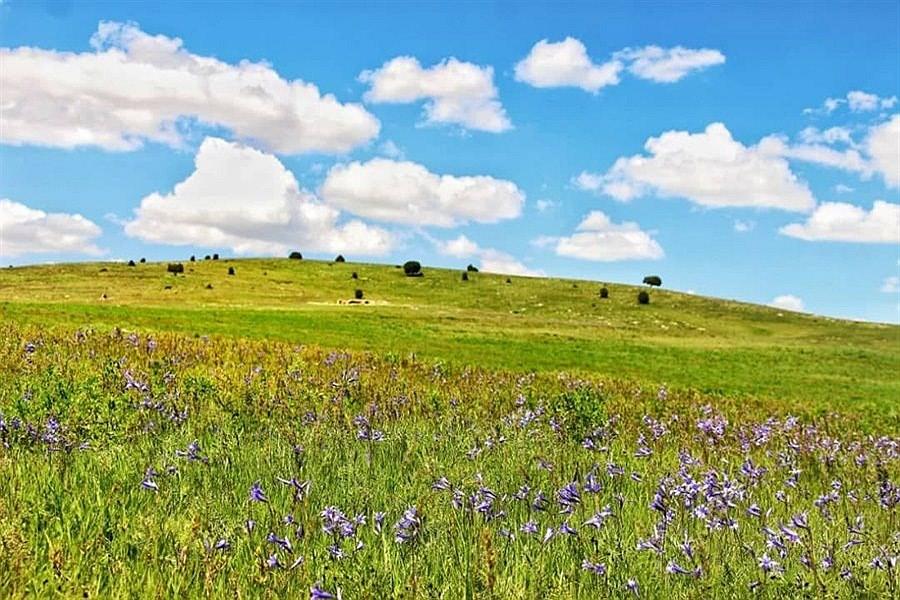 تصویر بهار خراسان شمالی به روایت تصویر