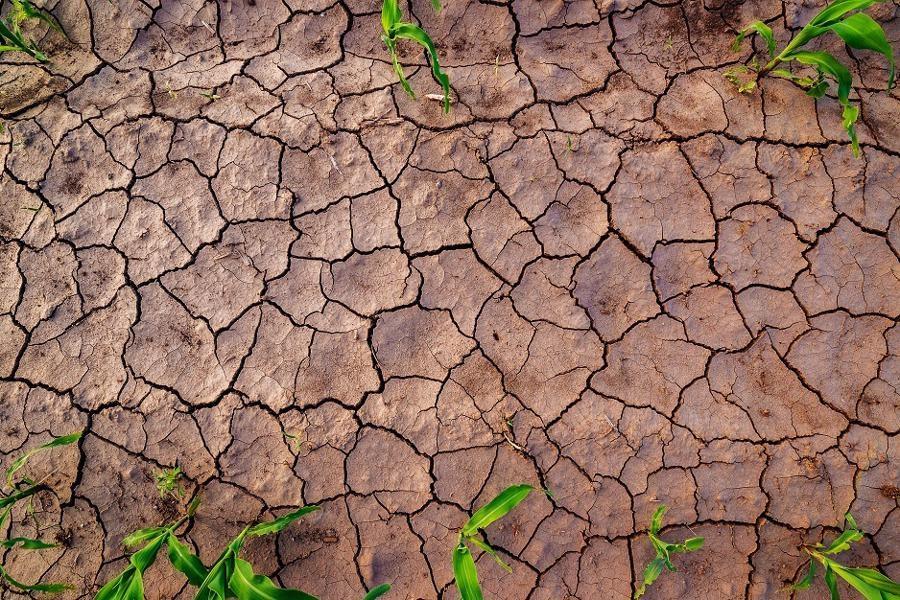 تصویر نگرانی از احتمال تنش آبی در آستارا