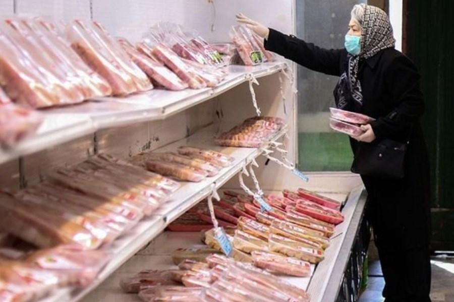 آغاز عرضه مرغ بستهبندی در فروشگاههای زنجیره ای تهران