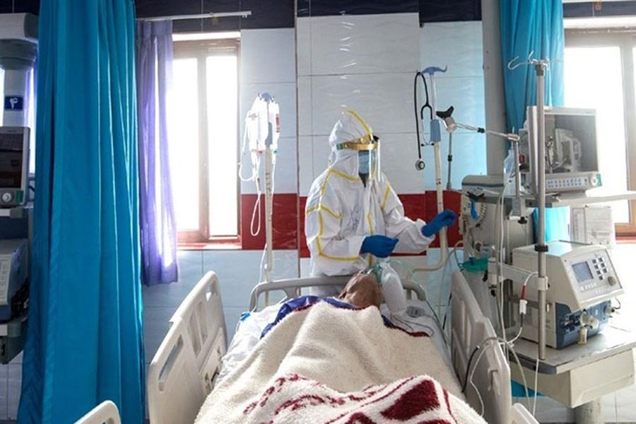 فوت ۳۱۹ بیمار در شبانه روز گذشته