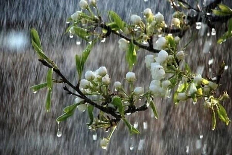 کاهش 65 درصدی بارش در مشهد و احتمال جیرهبندی آب