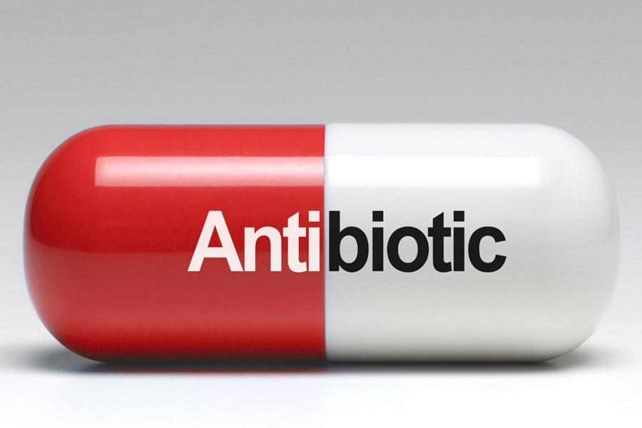 این آنتی بیوتیک طبیعی باکتریهای بدن را از بین می برد