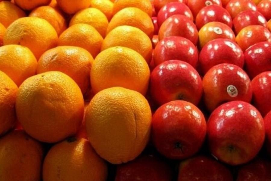 وزارت صمت مسئول فروش میوه نیست