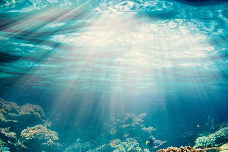 ویدئویی جالب از تغییر فشار آب در اعماق دریاها