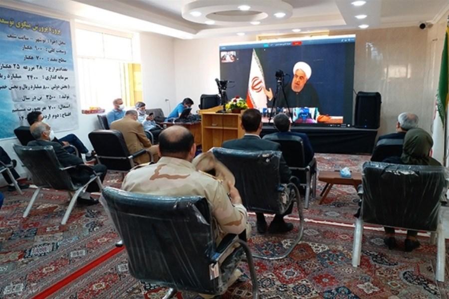 افتتاح چندین طرح بزرگ مشارکتی بانک کشاورزی در استان بوشهر