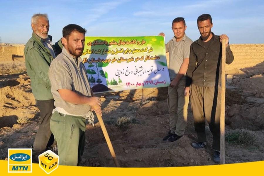 ایرانسل ۱2 هزار و ۶۰۰ نهال در استان های فارس و لرستان کاشت