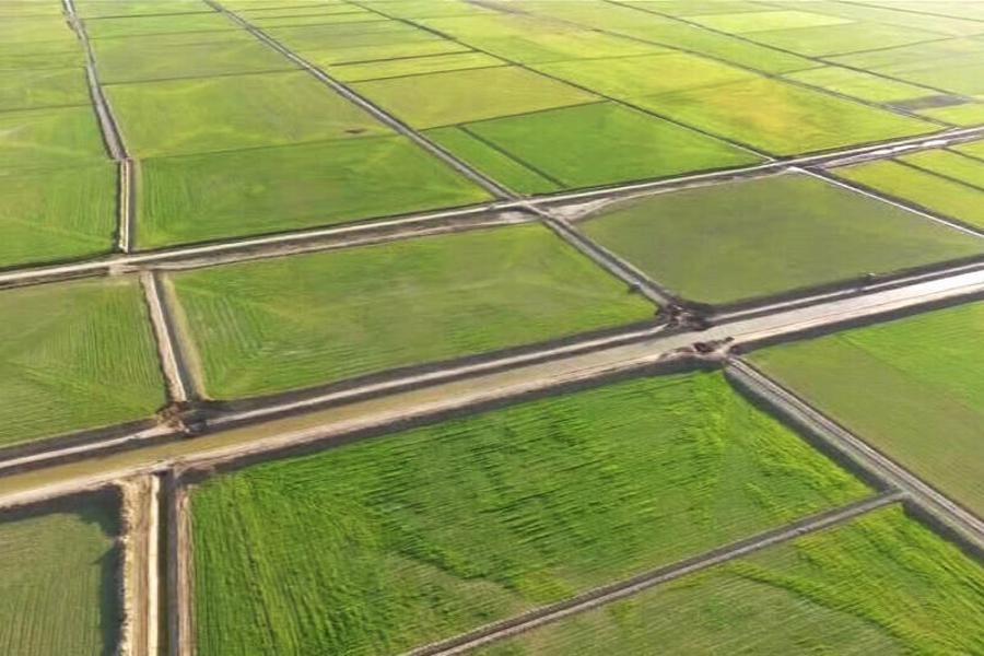 فرسایش خاک تهدیدی جدی برای اراضی کشاورزی گیلان