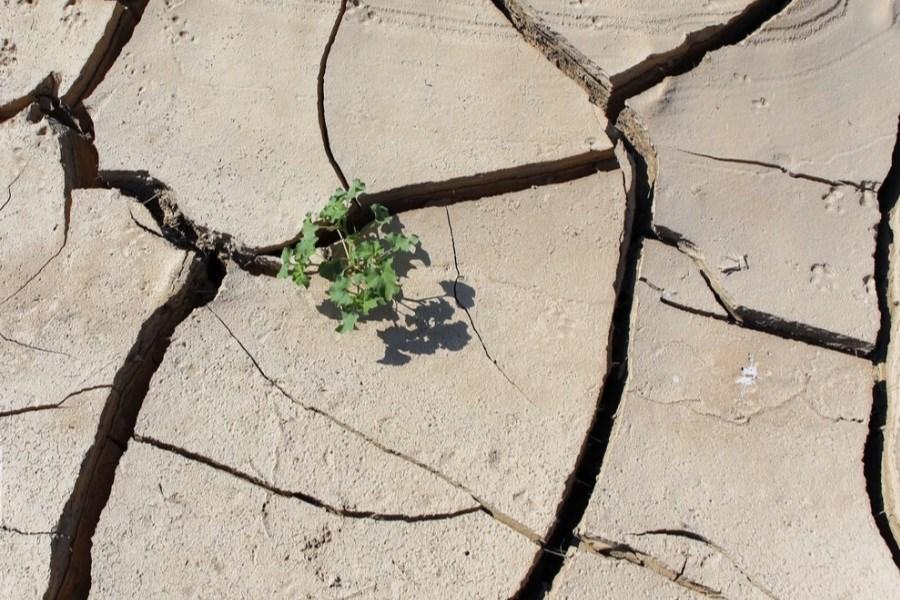 مدیریت بحران اقدامات اضطراری خشکسالی را مدنظر قرار میدهد