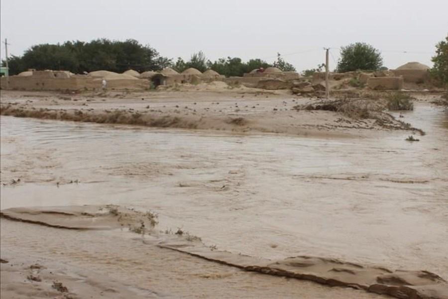 تصویر در سیلاب هرات 12 نفر را آب برد