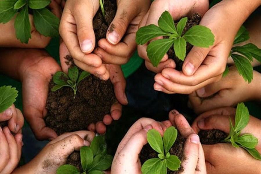 حمایت 2 هزار میلیاردی بانک کشاورزی از زنان و جوانان روستایی