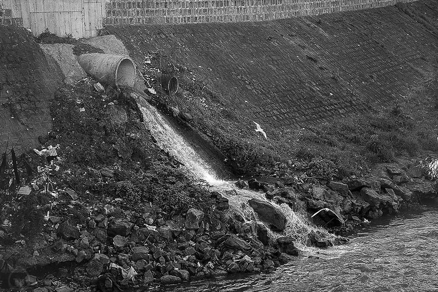 داستان احیای 10 ساله رودخانه های رشت/ زرجوب و گوهررود همچنان خالی از حیات به سر می برند