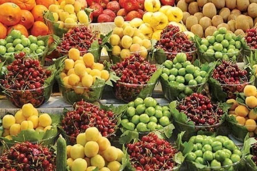 قیمت میوههای نوبرانه درجه یک