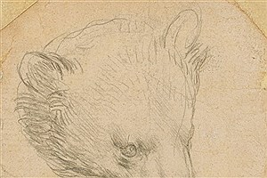 تصویر  مزایده خرس میلیون دلاری داوینچی