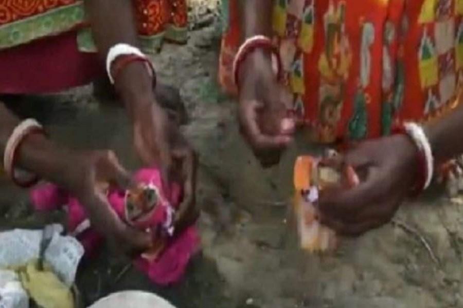 مراسم ازدواج قورباغه ها در هند!