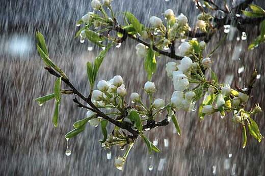 هشدار هواشناسی نسبت به تشدید بارش در ۸ استان