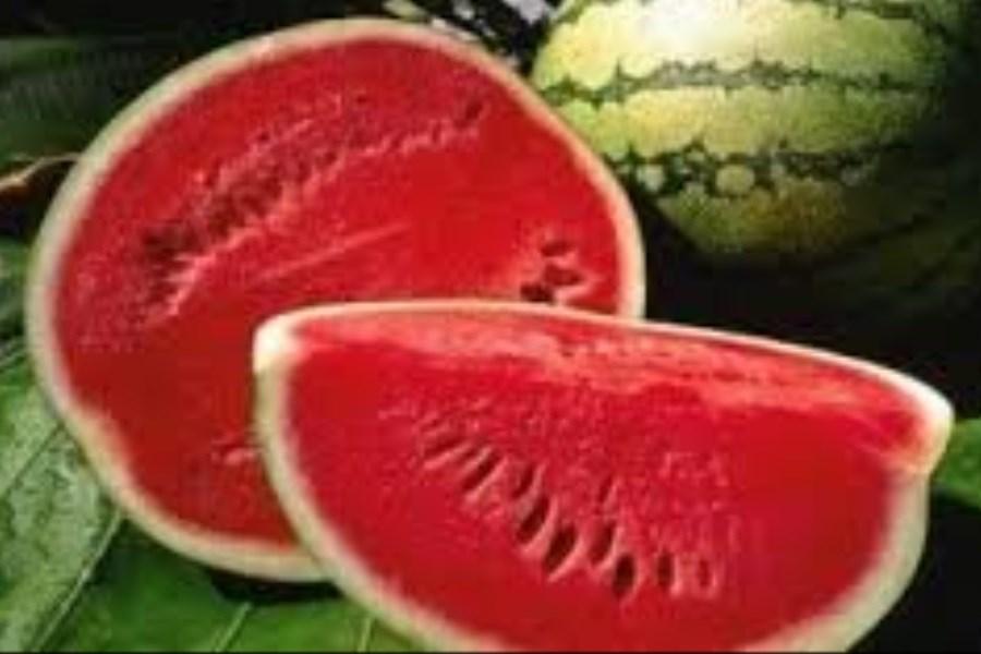 هندوانه، میوه ای با خاصیت ضد سرطانی
