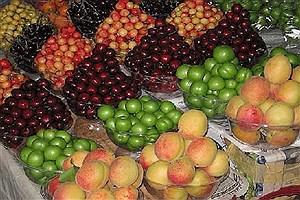 تصویر  میوههای فصل برای خانوادهها چقدر هزینه دارد؟