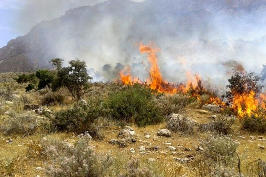 ادامه آتشسوزی در منطقه باشت کهگیلویه و بویراحمد