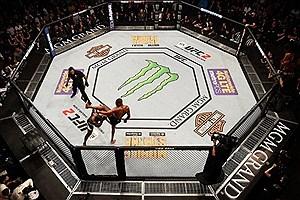 تصویر  فراخوانی برای عضوگیری علاقمندان به MMA در کرمانشاه