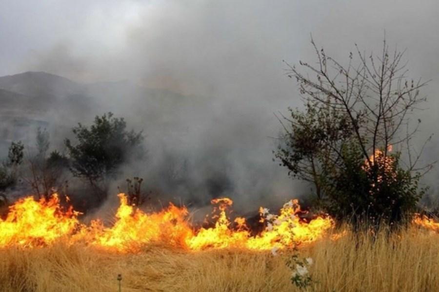 تصویر عوامل انسانی مسبب ۷۵ درصد آتشسوزیهای مراتع / طارم، زنجان و ماهنشان قربانگاه های اصلی