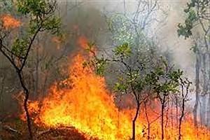 تصویر  هشدار هواشناسی مبنی بر احتمال آتشسوزی در جنگلهای هیرکانی گلستان
