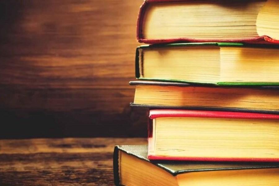 انتشار کتاب «بیرجندیهها» با گردآوری محمدرضا راشد محصل