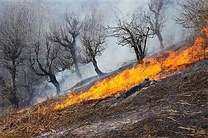 تصویر  ۲ آتش سوزی در جنگلها و مراتع شهرستان بویراحمد مهار شد