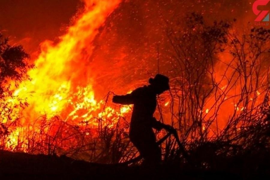 تلاش آتش نشان ها برای مهار آتش سوزی جنگل های آمریکا