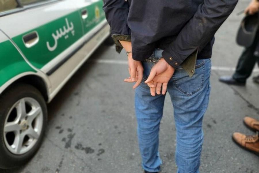 باند سرقت در جنوب تهران دستگیر شدند