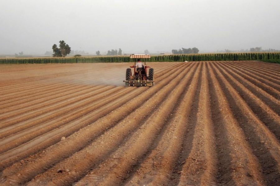 اولویتهای بخش کشاورزی در دولت آینده