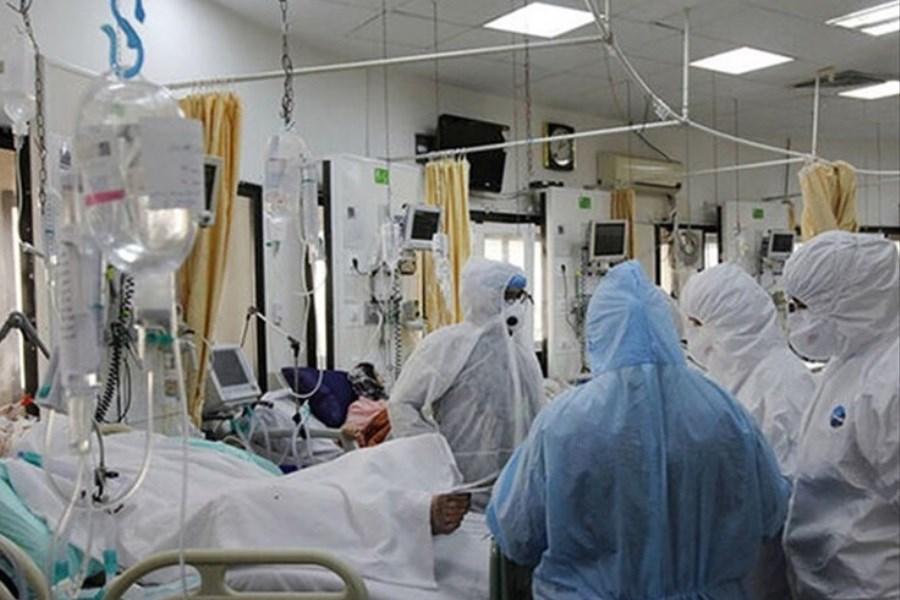 جدیدترین آمار رسمی کرونا / ۸ هزار و ۸۴۶ بیمار جدید و ۱۷۹ جان باخته
