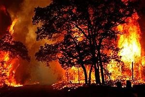 تصویر  زنگ خطر آتش سوزی در مراتع شهرستان قوچان
